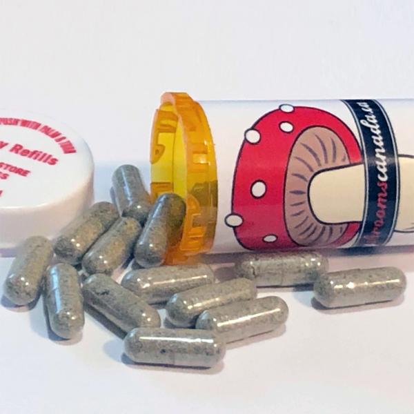 shroom capsules